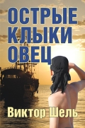 VShel_book cover_Feb7.indd